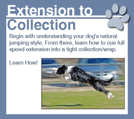 extension-to-collection