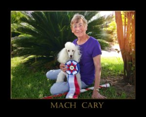 Mach cary 3 in frame